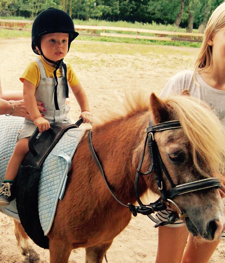 Leos entdeckt die Ponys, Düsseldorf & Köngen, D, Juli 2017